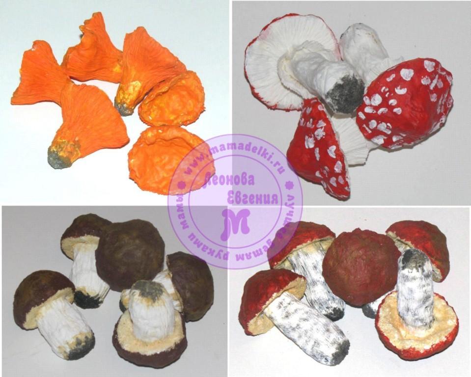 грибы 4