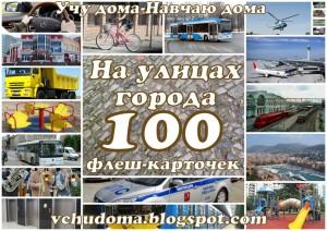100-flesh-kart-gorod