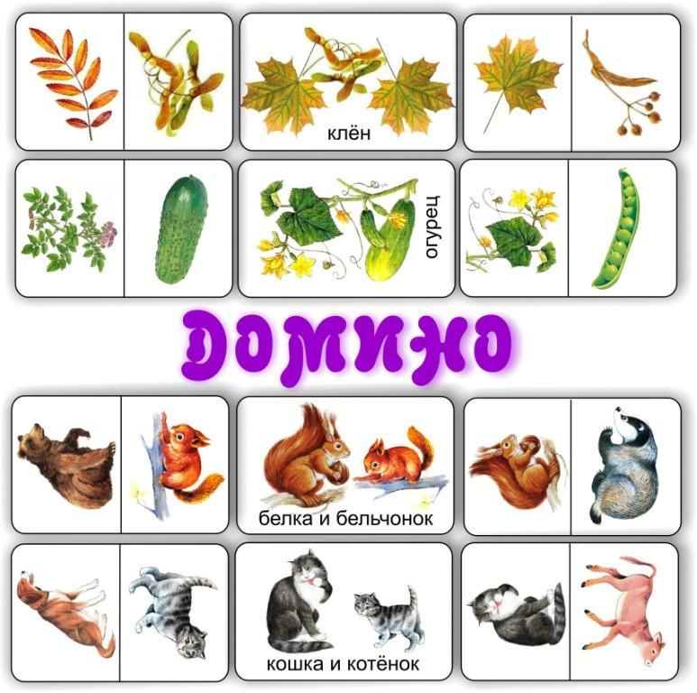 razvivayushchee-domino