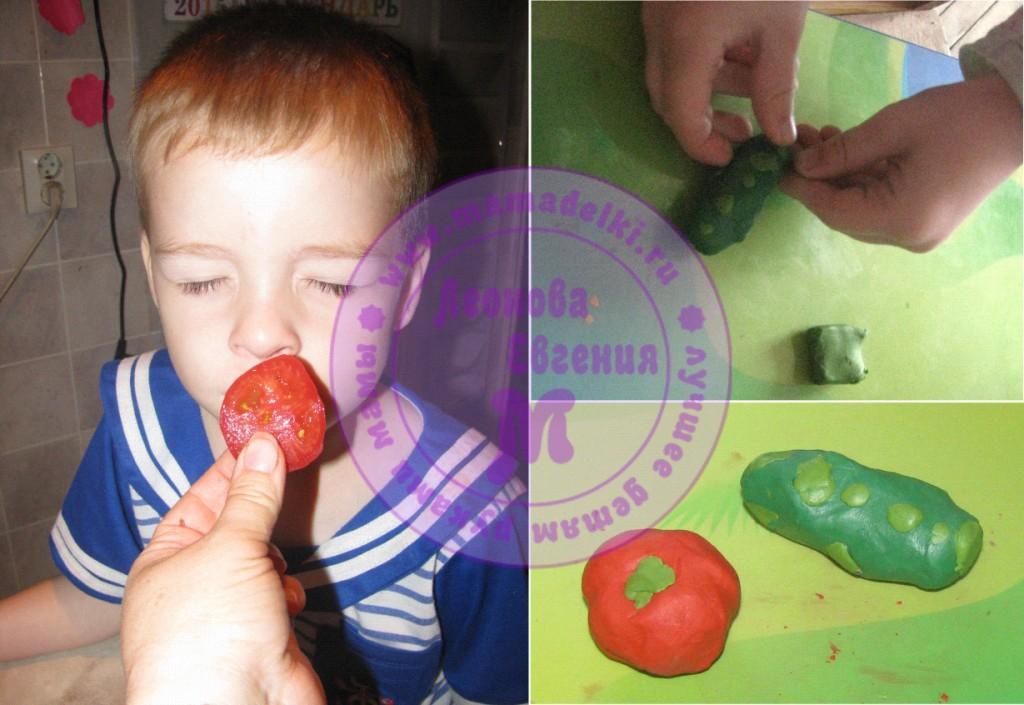 mp-28-ogurcy-i-pomidory 8