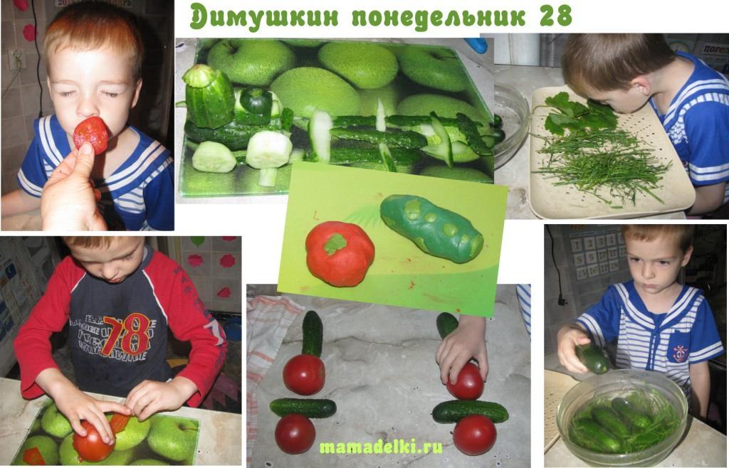 mp-28-ogurcy-i-pomidory