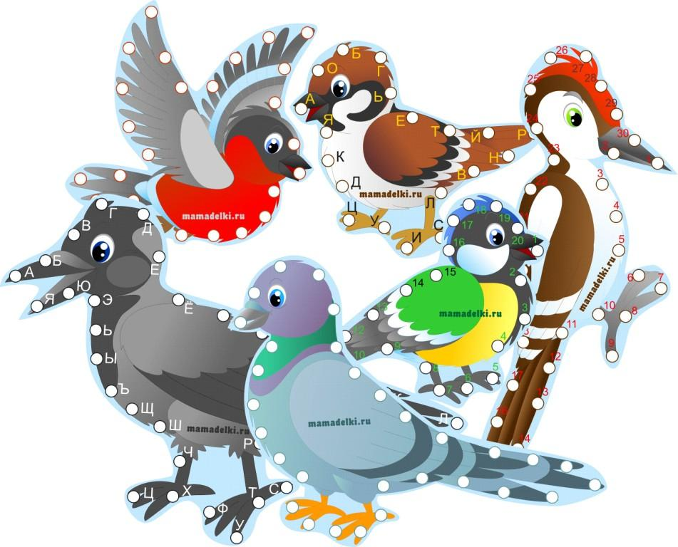 Картинки снегирь синица зимующие птицы картинки
