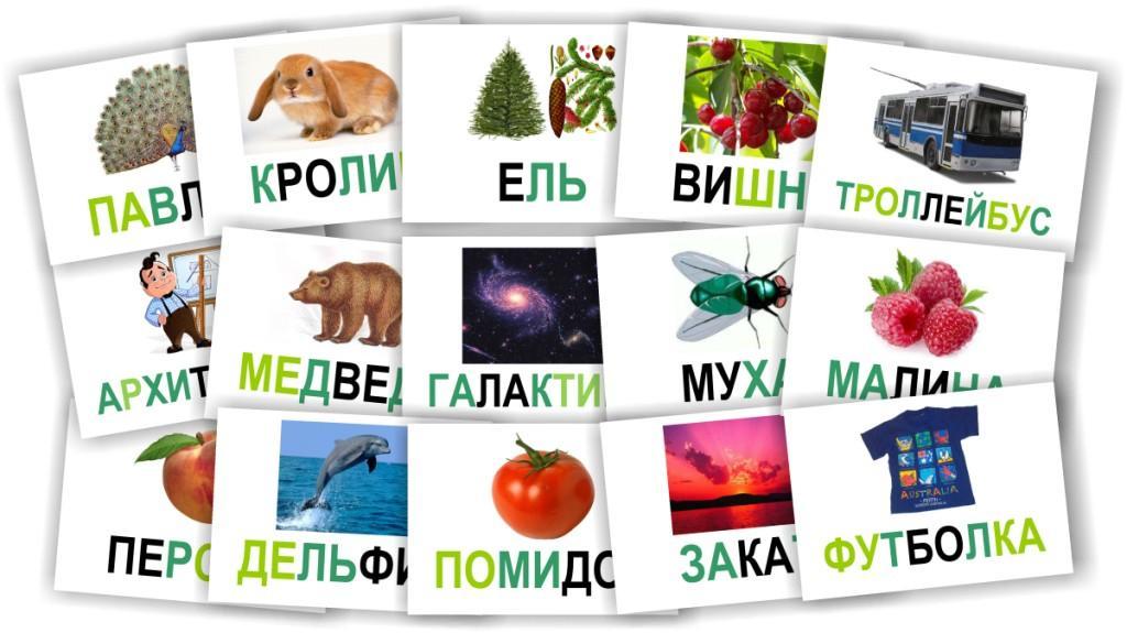 kartochki-slova-i-kartinki
