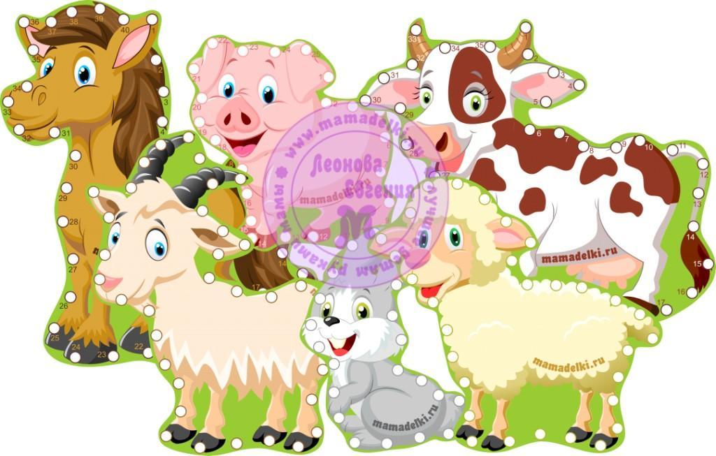 Животные фермы шнуровки