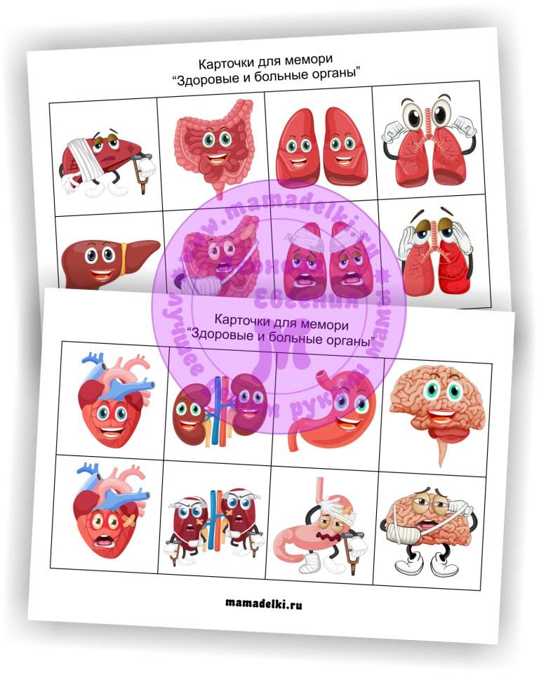 memori-zdorovye-i-bolnye-organy